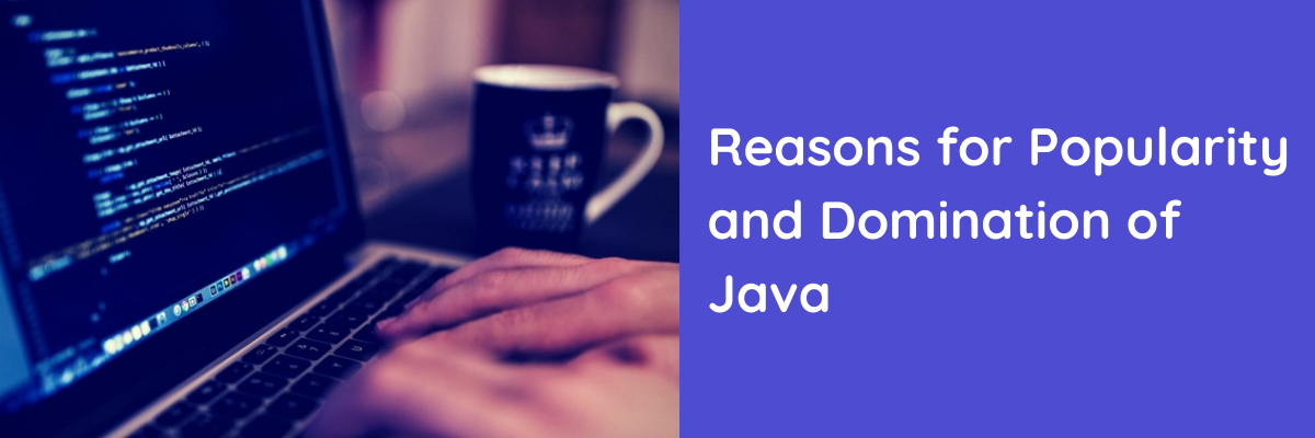 Reasons for Popularity and Domination of Java Programming Language