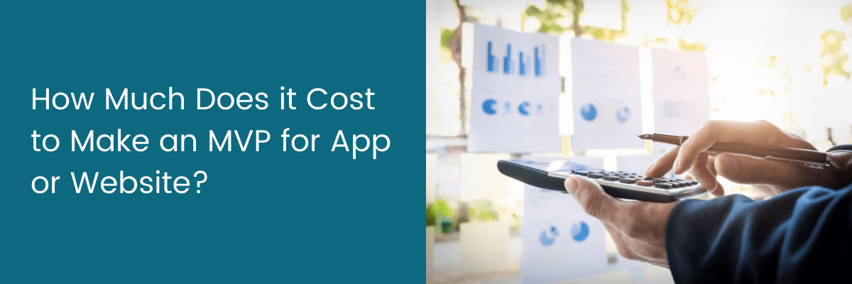 How Much Does it Cost to Make an MVP for App or Website?