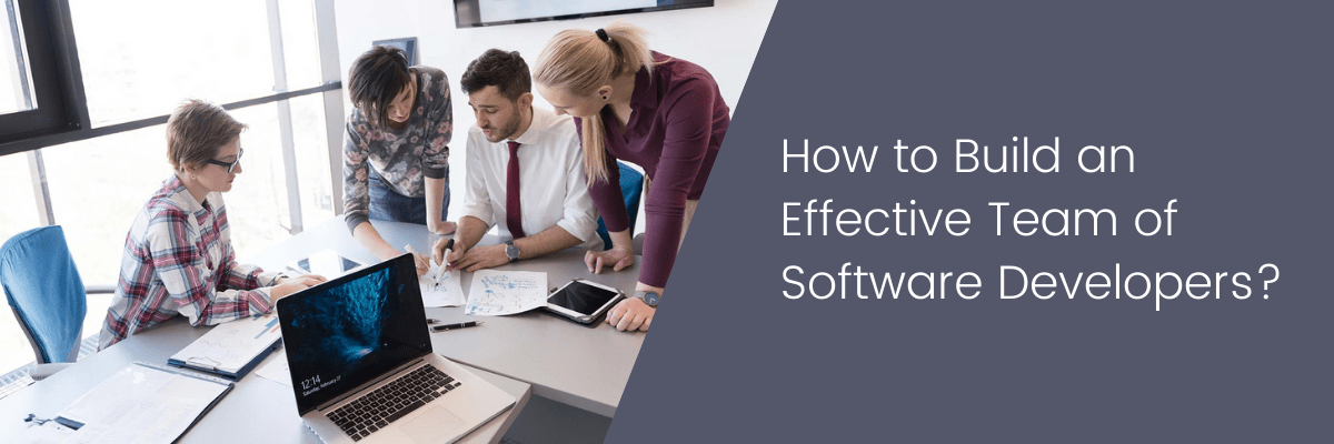 How to Build an Effective Team of Software Developers?