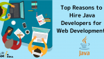 Top Reasons to Hire Java Developer for Web Development!