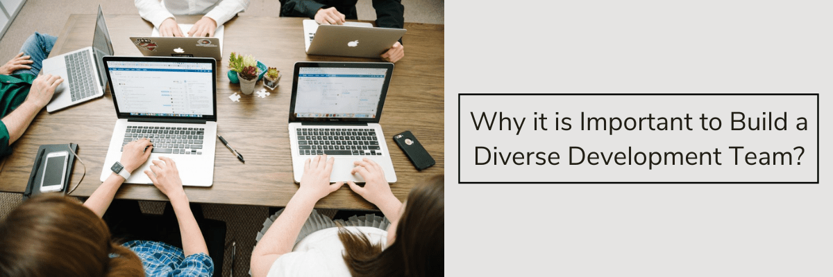 Why it is Important to Build a Diverse Development Team?